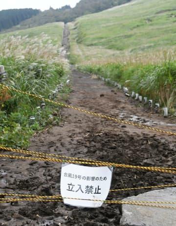 立ち入りが禁止されている「仙石原すすき草原」の遊歩道=箱根町仙石原