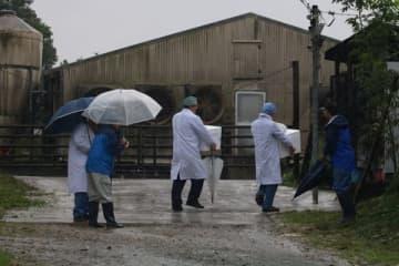 【ワクチン接種のため養豚場に立ち入る獣医師ら=玉城町蚊野で】