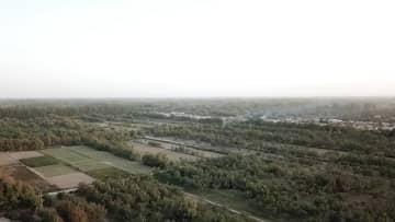 新疆ウイグル自治区の農家が手にした「うさぎスマホ」