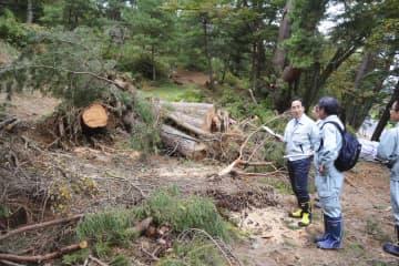 土砂崩れが起きた南湖公園の現場を確認する文化庁の調査官ら=24日、福島県白河市