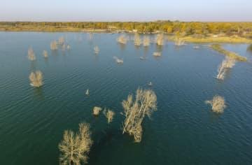 紺碧の絶景 砂漠に広がる「羅布湖」 新疆ウイグル自治区