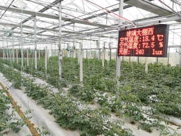テクノロジーと金融の両輪駆動 中国スマート農業が「新たなブルーオーシャン」に