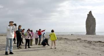 30日、初の観光ツアーで北方領土・国後島の名所「ローソク岩」を訪れた日本人観光客ら(共同)