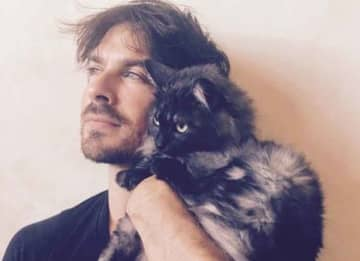 Taylor Swift, Ian Somerhalder & Other Stars Celebrate National Cat Day [Best Photos]