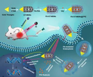 中国の科学者、抗がん作用を持つ新材料を開発