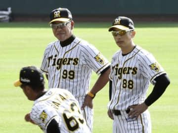 阪神の秋季キャンプが始まり、練習を見守る矢野監督(右)と井上打撃コーチ=高知県安芸市