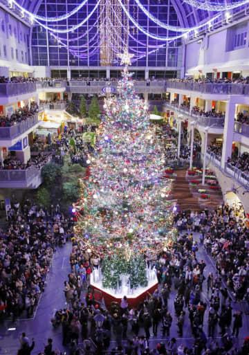 高さ15mのツリーに点灯、札幌 一足早くクリスマス