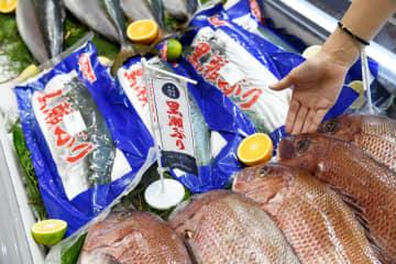 中国国際漁業博覧会のジャパンパビリオンを訪ねて 山東省青島市