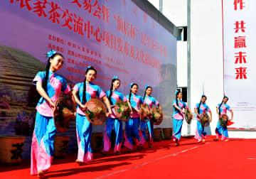 小さな村の闘茶競技会 福建省武夷山市