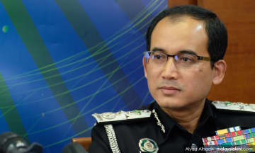 Immigration didn't carry out raid on Batu Caves temple grounds, says DG