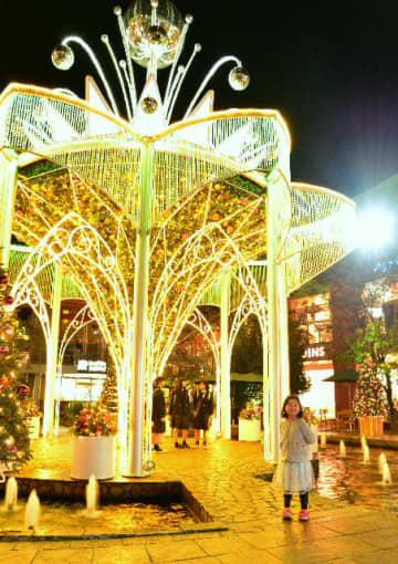 買い物客の目を楽しませているクリスマスのイルミネーション=大分市のパークプレイス大分