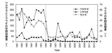 島根県宍道湖の年間漁獲量の推移。縦の点線で示した1993年にネオニコチノイド系殺虫剤が初めて使用された。(画像:東京大学発表資料より)