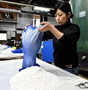 洗米した酒米の状態を確かめる小針さん