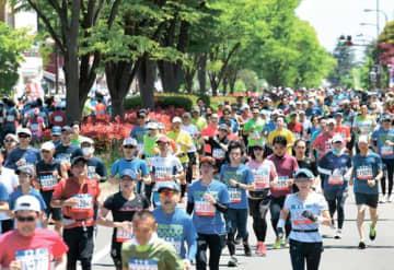 新緑が映える新たなコースを駆け抜けるランナー=2019年5月12日、仙台市宮城野区の宮城野通