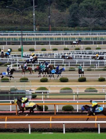 【資料写真】JRA栗東トレーニングセンター(滋賀県栗東市)