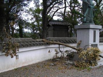 台風15号による倒木で壊れた久留里城の塀(君津市立久留里城址資料館提供)