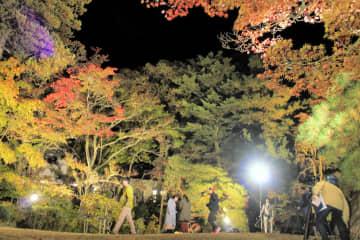 紅葉がライトアップされた南昌荘の庭園
