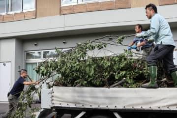 アカメガシワやササなど剪定作業で出た枝を運び込む府立植物園と市動物園の職員(京都市左京区・市動物園)
