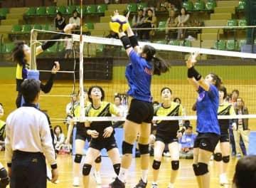 タイ代表(ネット手前)との練習試合に臨む岡山シーガルズの選手たち=山陽ふれあい公園体育館
