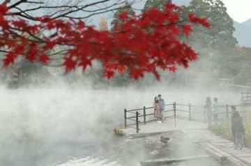 湯気に覆われた金鱗湖を楽しむ観光客ら=7日午前7時すぎ、由布市湯布院町
