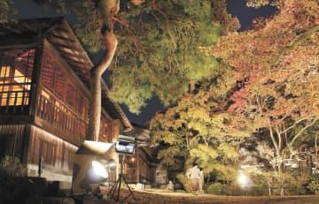 紅葉が鮮やかにライトアップされた南昌荘の庭園