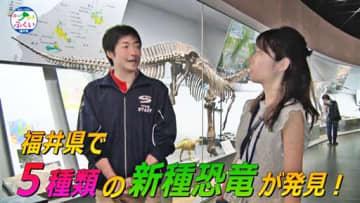 「福井県の日本一」をテーマに、福井県立恐竜博物館の魅力などを紹介している動画の一場面