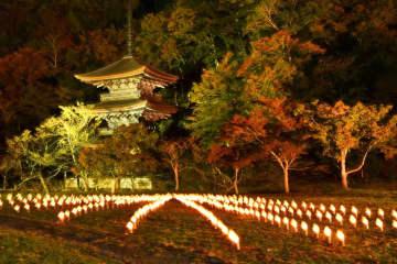揺らめく竹灯籠の明かりとともに金剛院の三重塔がライトアップされ、幻想的な雰囲気に包まれる会場(舞鶴市鹿原)