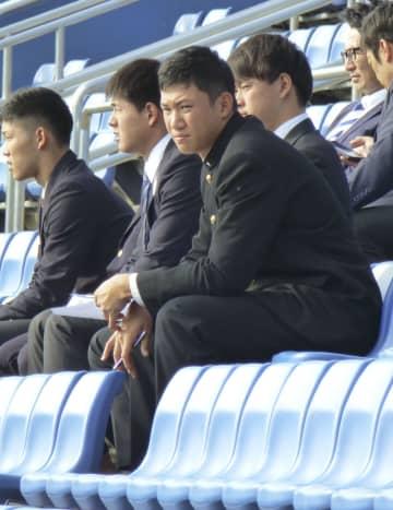 ヤクルトの秋季キャンプをスタンドから見学するドラフト1位の奥川恭伸投手(手前)=9日、松山市