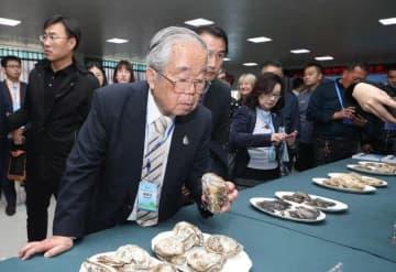乳山のカキの成長に立ち会ってきた日本人研究者 山東省