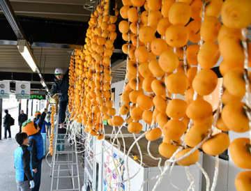 生産者らが紅干し柿をつり下げ、駅利用者を楽しませている=上山市・JRかみのやま温泉駅
