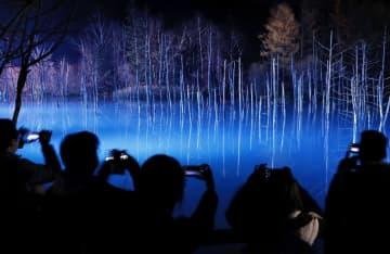LEDの照明で幻想的にライトアップされた北海道美瑛町の観光名所「青い池」。ロマンチックな雰囲気が訪れる人を魅了していた=12日夕