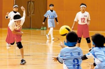 子どたちが熱戦を繰り広げた愛媛新聞社杯県ドッジボール大会