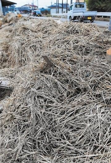 処理が課題となっている災害廃棄物の稲わら=10月、大崎市鹿島台大迫