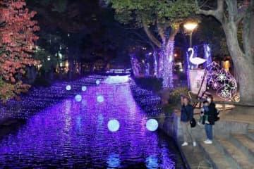 開幕した「西川イルミ'19」。川面に光が反射し、辺りを幻想的な雰囲気に包んでいる