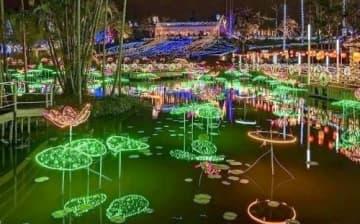 東南植物楽園のイルミネーション「ひかりの散歩道」(東南植物楽園提供)