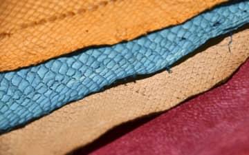 染色されたフィッシュレザー。(左上から)サケ、タイ、スズキ、ブリの皮を利用している