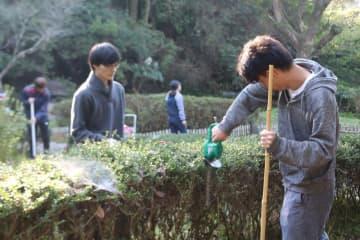 樹木を切りそろえる学生たち=諫早市、百日紅公園