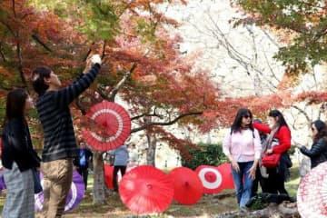 番傘で飾られた紅葉を楽しむ観光客ら