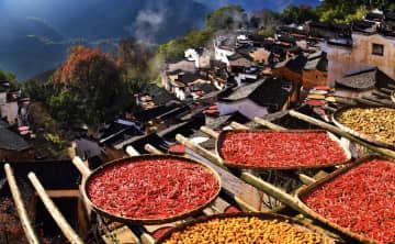 農民カメラマンのレンズに映る農村振興 江西省婺源県