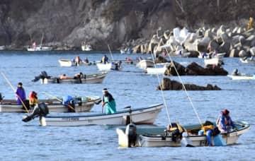 箱眼鏡やさおを使いアワビ漁に励む漁業者ら=17日午前7時25分、宮古市重茂