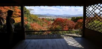 鮮やかな紅葉と京都の街並みをパノラマで眺めることができる大河内山荘の展望台(12日、京都市右京区)