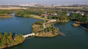 初冬の天福国家湿地公園 江蘇省崑山市