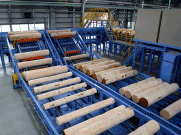 キーテック山梨工場。原木をコブ取り装置にかけ、単板製造時の負荷を小さくしている