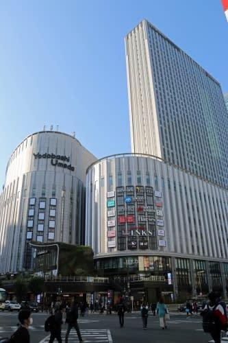 ヨドバシ梅田タワー、左側が既設のマルチメディア梅田、後方の高い部分はホテル棟(筆者撮影)