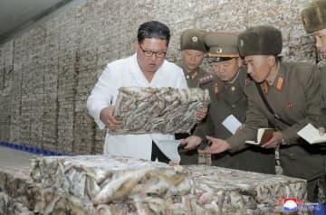 朝鮮人民軍の「8月25日水産事業所」と江原道に新設された水産加工工場を視察する金正恩朝鮮労働党委員長。朝鮮中央通信が19日報じた(朝鮮通信=共同)
