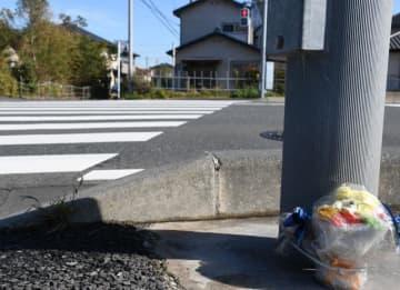 安藤音織さんら小学生女児2人が事故に遭った横断歩道前には花の置物が供えられていた=18日午前、木更津市江川