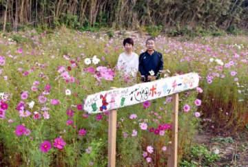 住民有志が開墾して作った花畑=薩摩川内市下甑町片野浦