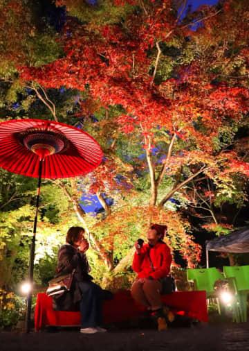 ライトアップされた紅葉の下でひと息入れる来場者=雲仙市、三十路苑