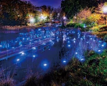 一夜限りの幻想的な世界を楽しむ「未来を照らせ~夢のカケラで光る池」青葉区もえぎ野公園