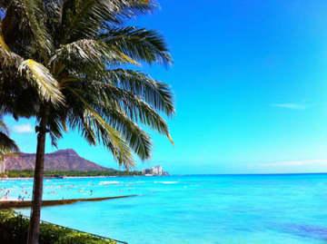 バーチャルアシスタントがお好みのハワイ旅行プランを提案